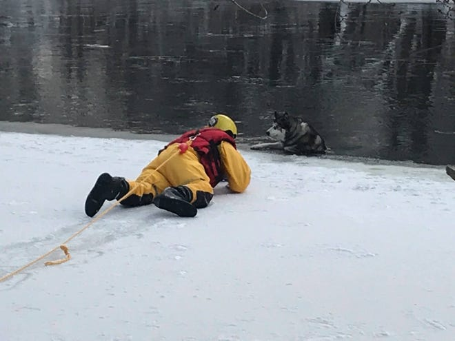 A Mequon Fire Department volunteer rescues Odin, a 6-year-old Siberian husky, from the Milwaukee River on Jan. 24.