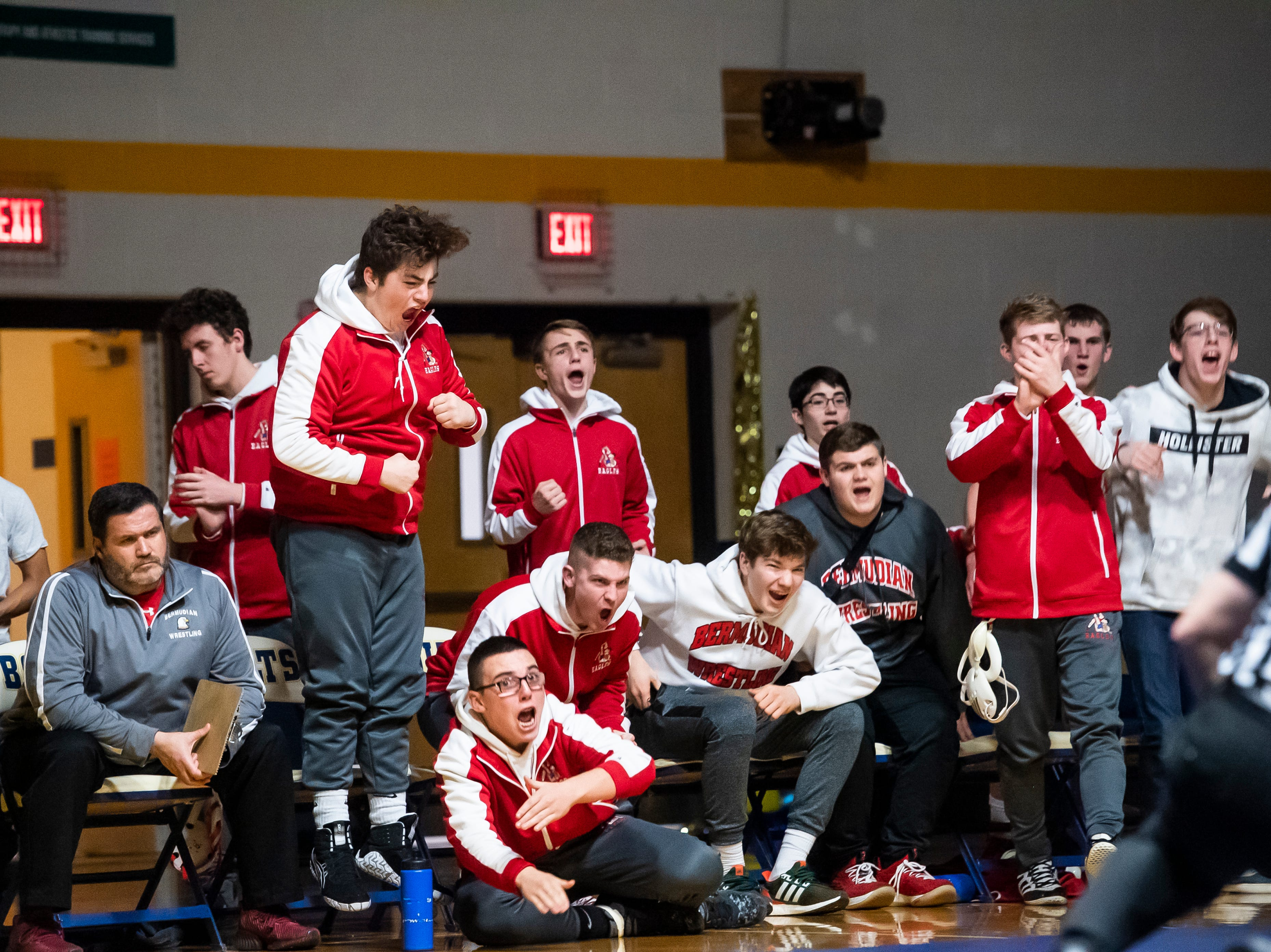 The Bermudian Springs bench reacts after Tanner Althoff pins Littlestown's Jacob Yealy in the 145-pound bout on Thursday, January 24, 2019.