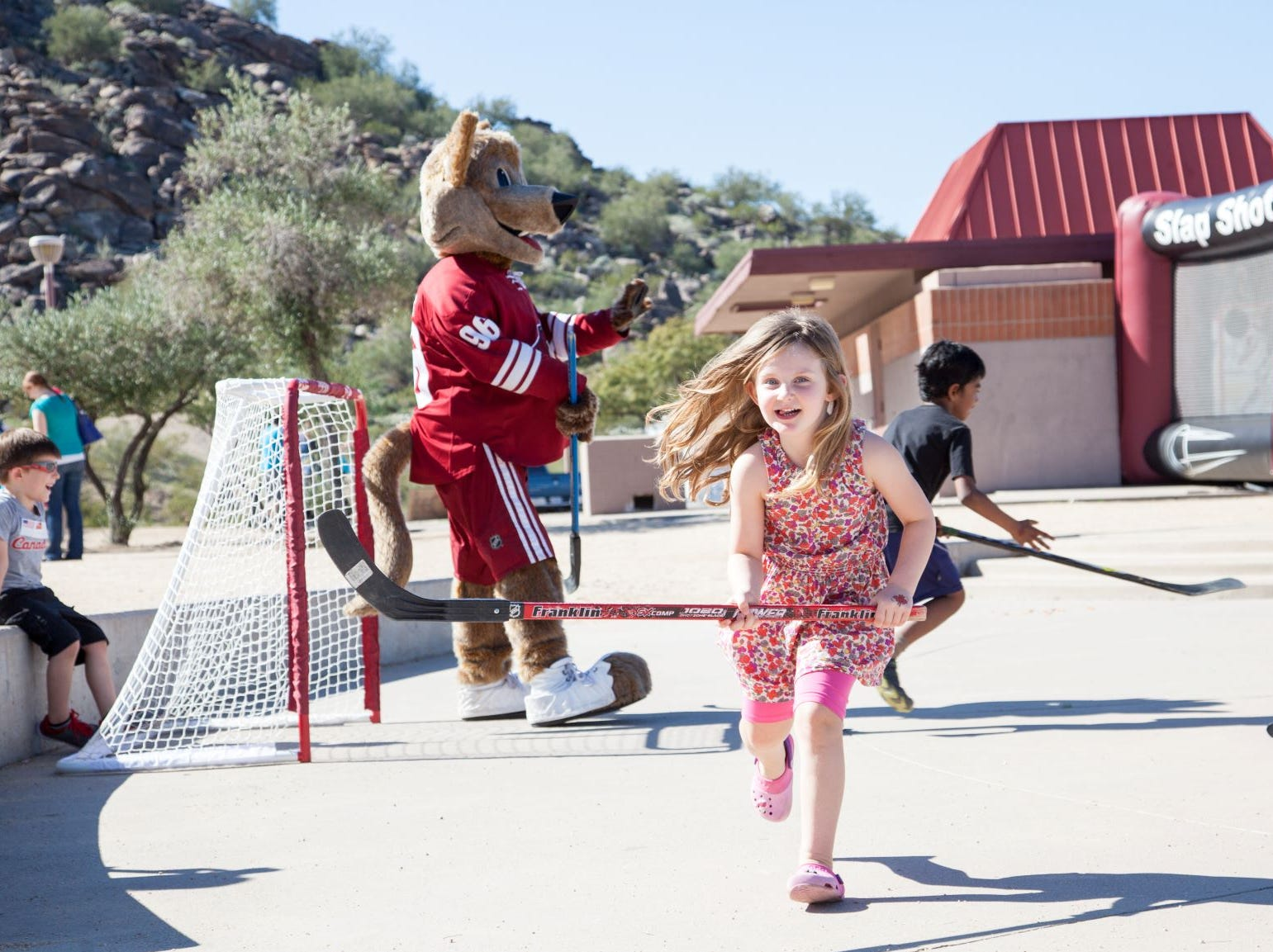 The Great Canadian Picnic will have Canadian-themed activities such as ball hockey.