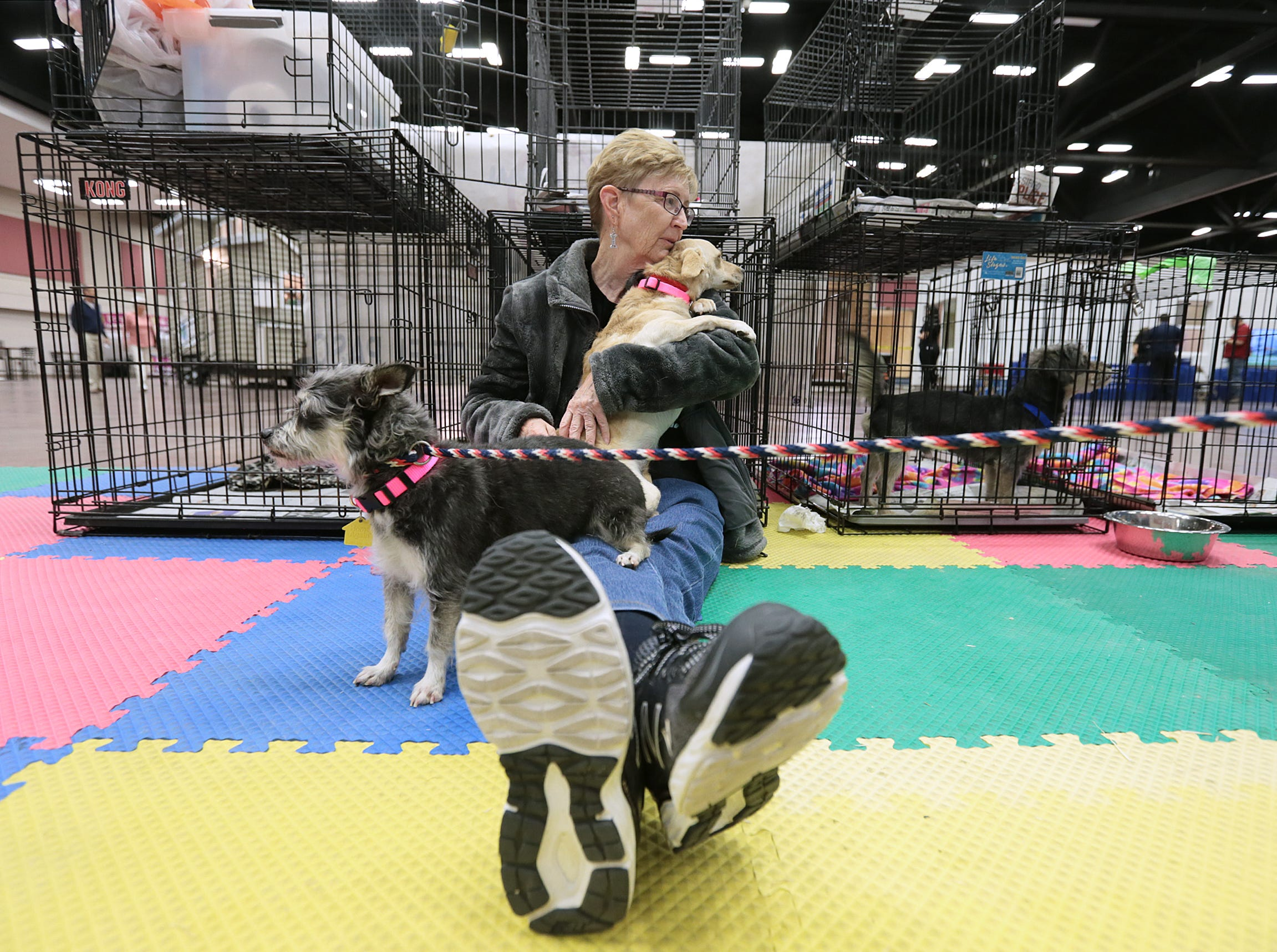 Animal Rescue League of El Paso volunteer and board member Heather Hall cuddles with puppies up for adoption at the El Paso Spring Home Show and Pet Expo Friday. The show continues Saturday 10-7pm and Sunday 11-4pm.