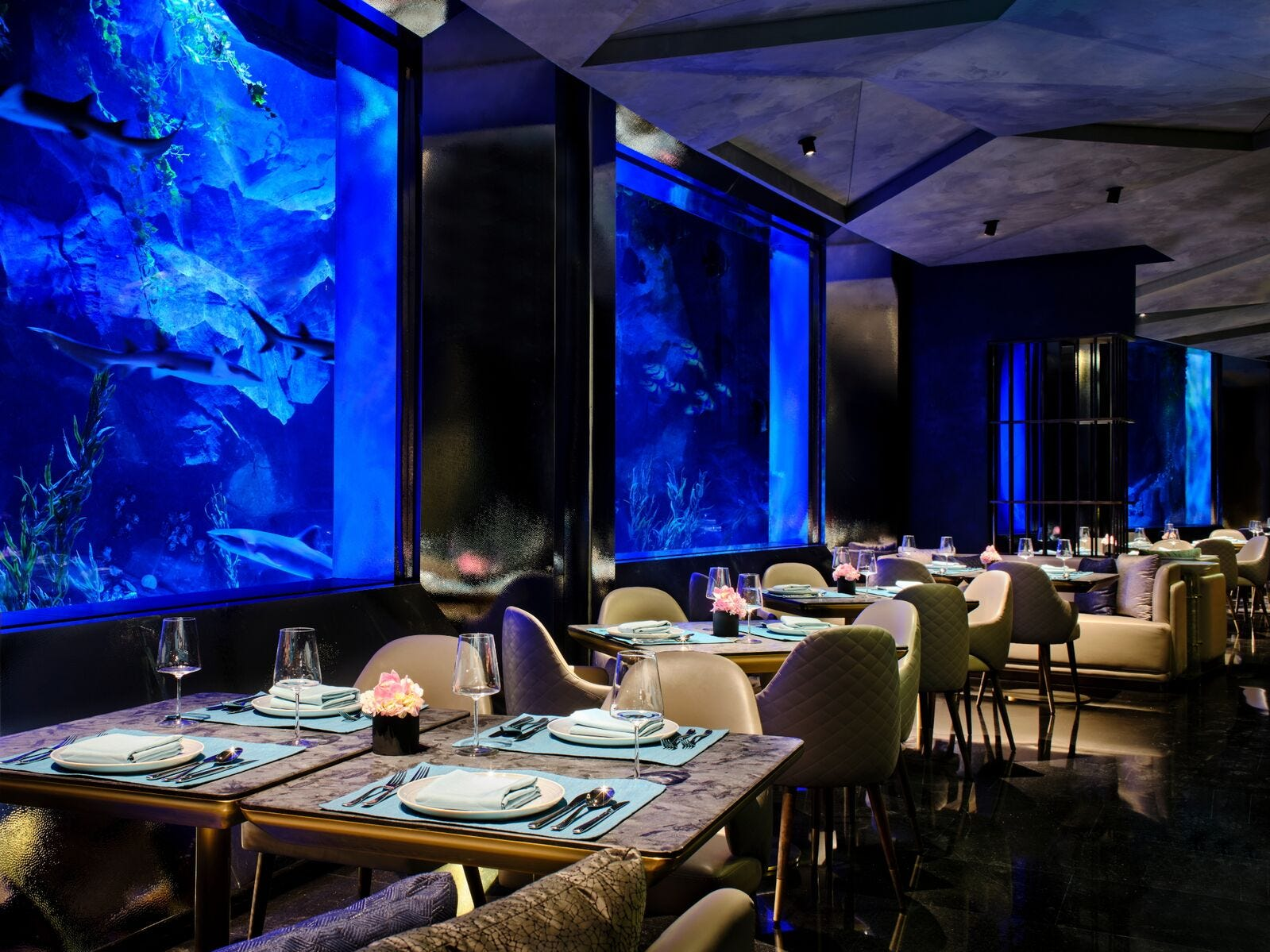 If you can't book one of the six underwater suites, dining here is the next best thing.