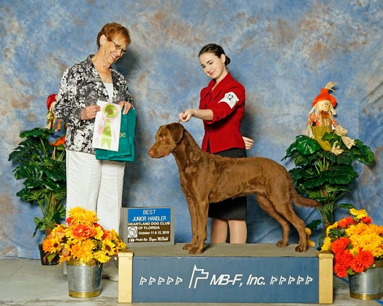 Jessica Braatz won Best Junior Handler at the Heartland Dog Club of Florida show Arcadia in October 2018.