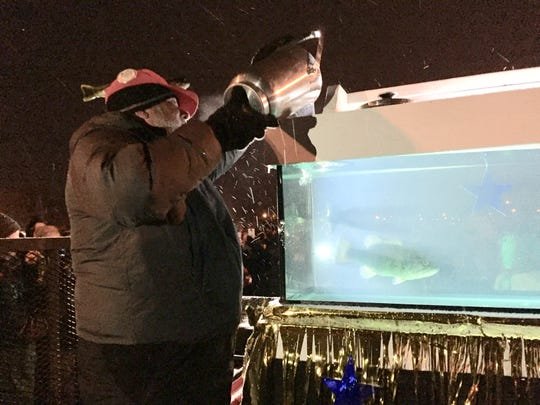 Buckeye Lake Winterfest founder Mike Fornataro pours a bucket of minnows into Benny the Bass' tank early Saturday morning. Benny ate a bass, thereby predicting an early spring.