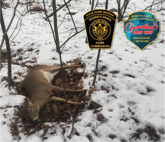 The Pa. Game Commission is looking for more information regarding two deer that were shot with a small caliber rifle in Adams County on Jan. 18.