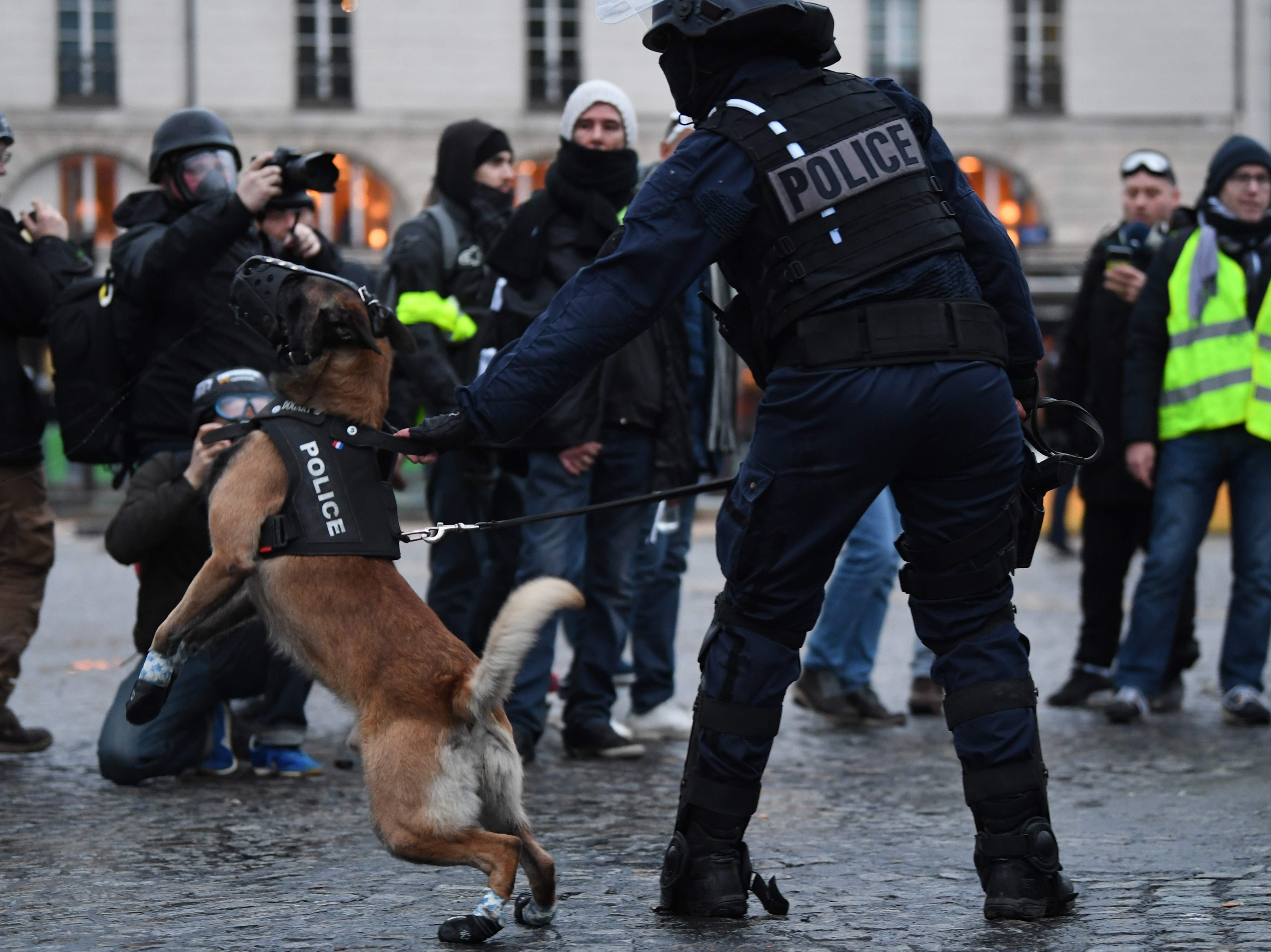 "A riot police officer stands guards with dogs during an anti-government demonstration called by the Yellow Vests ""Gilets Jaunes"" movement in Paris on Jan. 26, 2019."