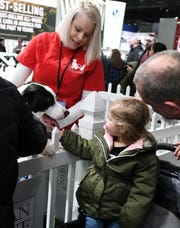Two-year-old Real Atchley, of Roseville gets a visit with a dog named Chance, with help from Michigan Humane Society volunteer Martina Maher at the Subaru display.