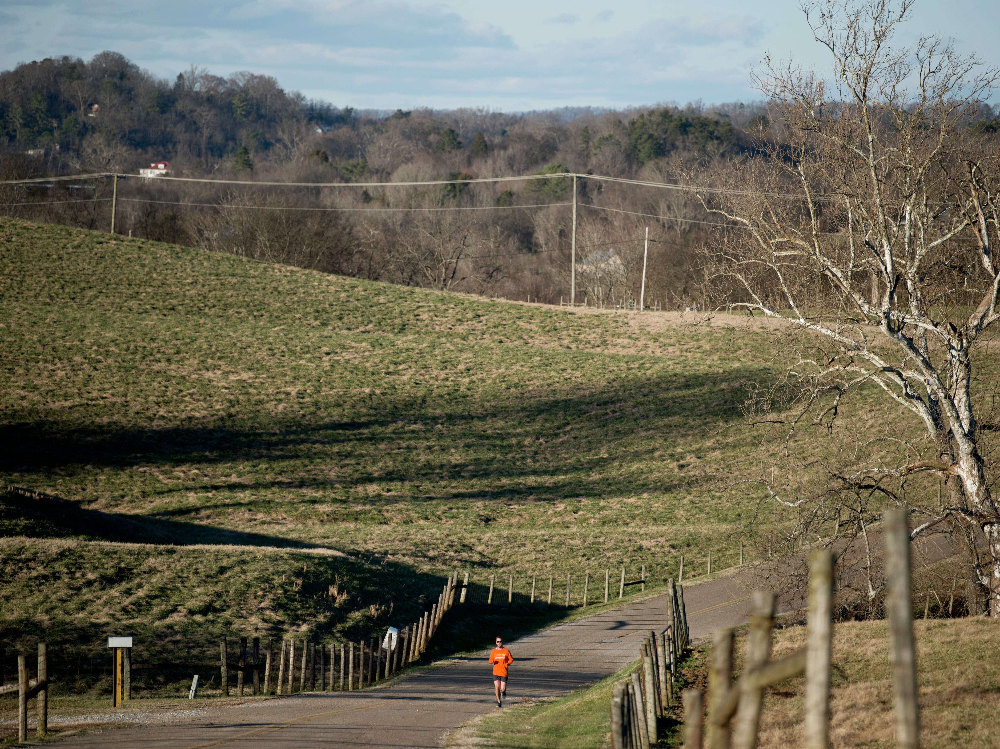 Casey Holbrook, of Knoxville, jogs down Kreis Road in Knoxville, Tennessee on Wednesday, January 9, 2019. Holbrook said he comes to run on Kreis Road often for the scenic views and cattle grazing in the fields.