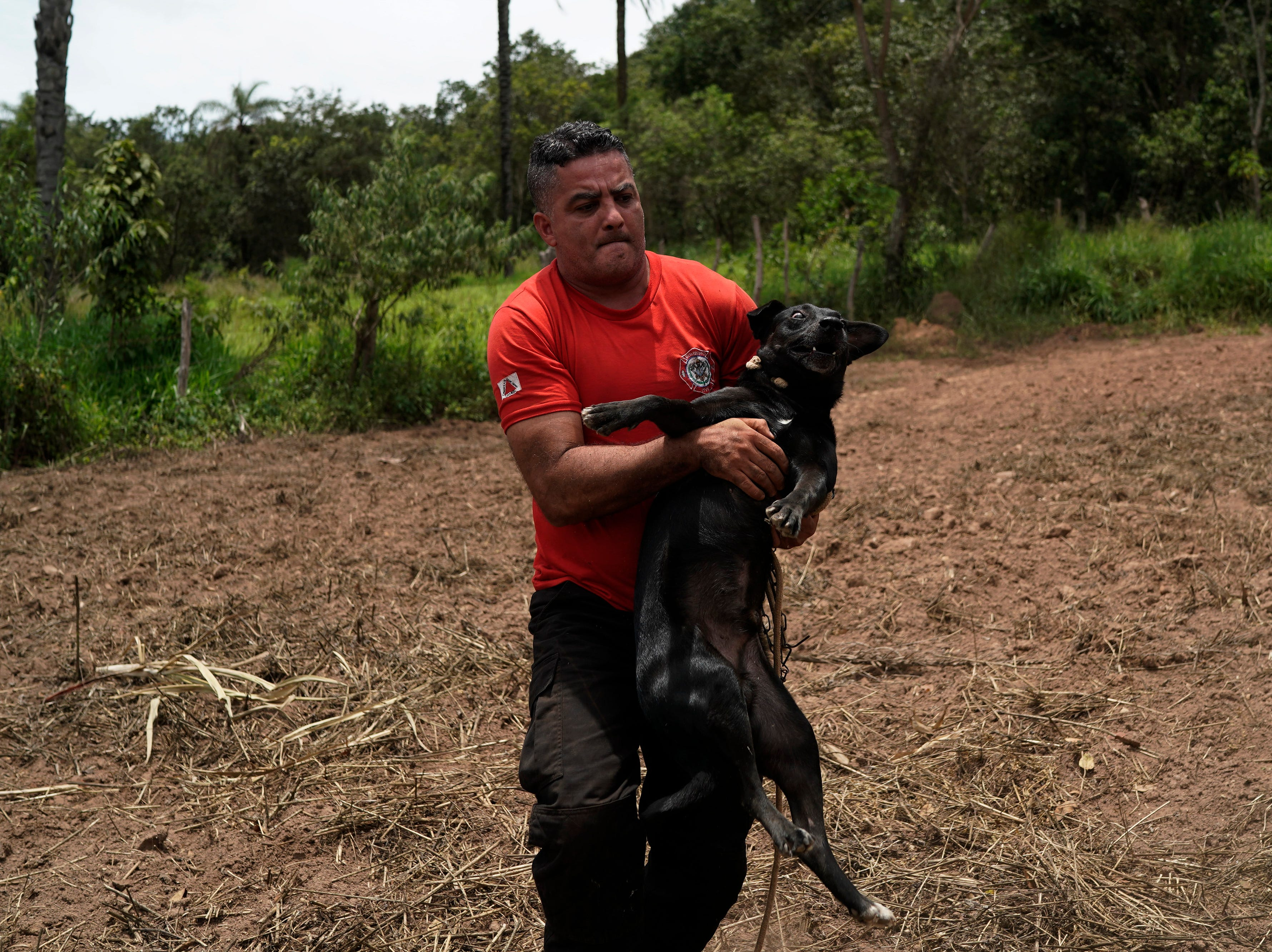 Civil firefighter Leoncio Valverdes carries a dog found tied to a home as he rescues him from a flooded area two days after a dam collapse in Brumadinho, Brazil, Sunday, Jan. 27, 2019.