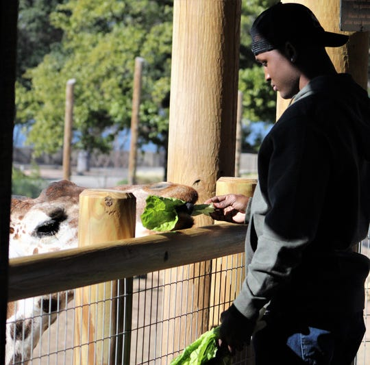 "Actor Acorye White, as Abilene High School running back Hershel Sims, feeds a giraffe on Monday morning at the Abilene Zoo. In the scene, Sims is dealing with his mother's trouble with check fraud and contemplating hiring an attorney. ""It's my new favorite animal,"" White said after his scene with the giraffe."
