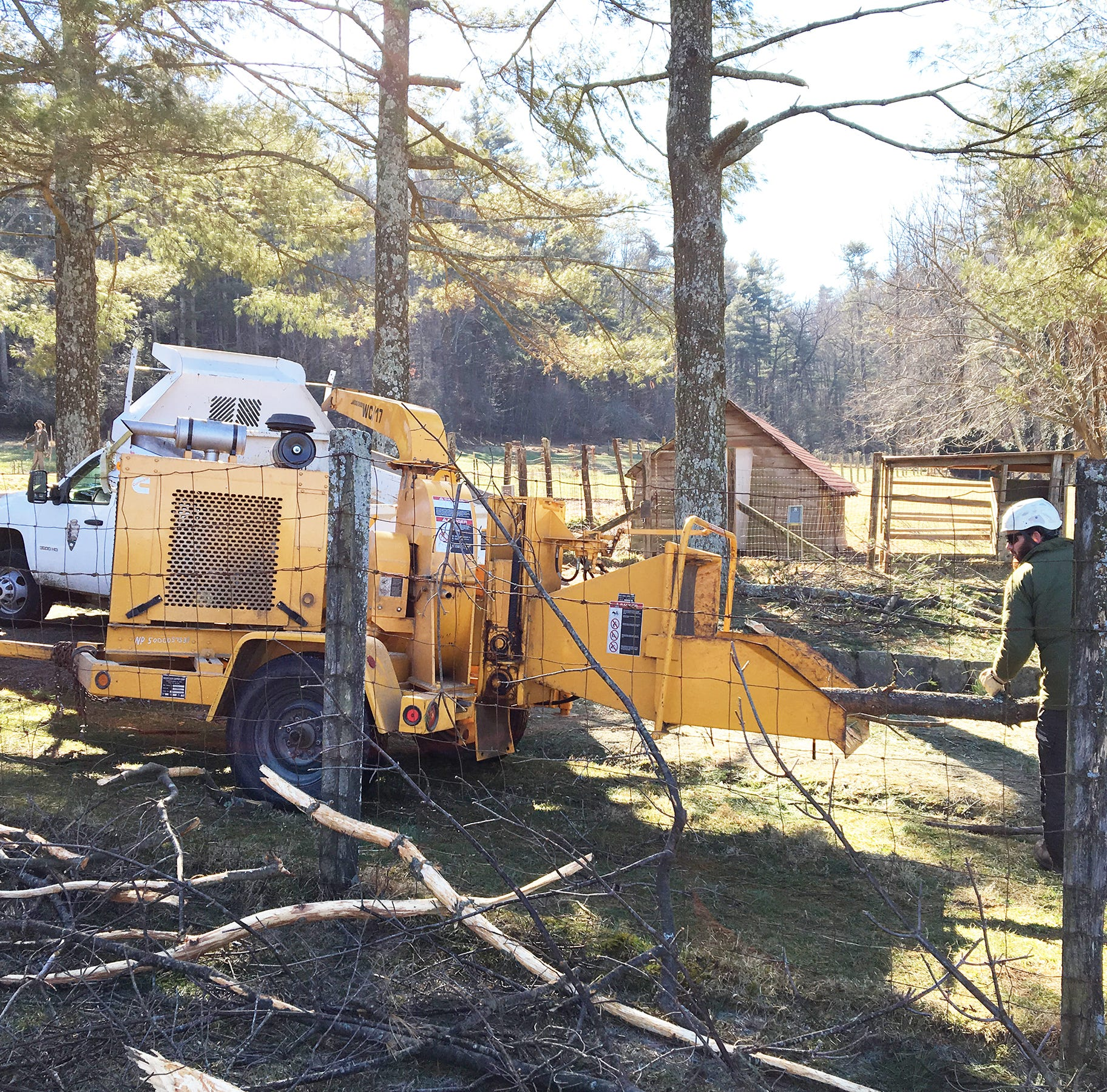 Carl Sandburg Home remains closed as staffers remove hazard trees, limbs