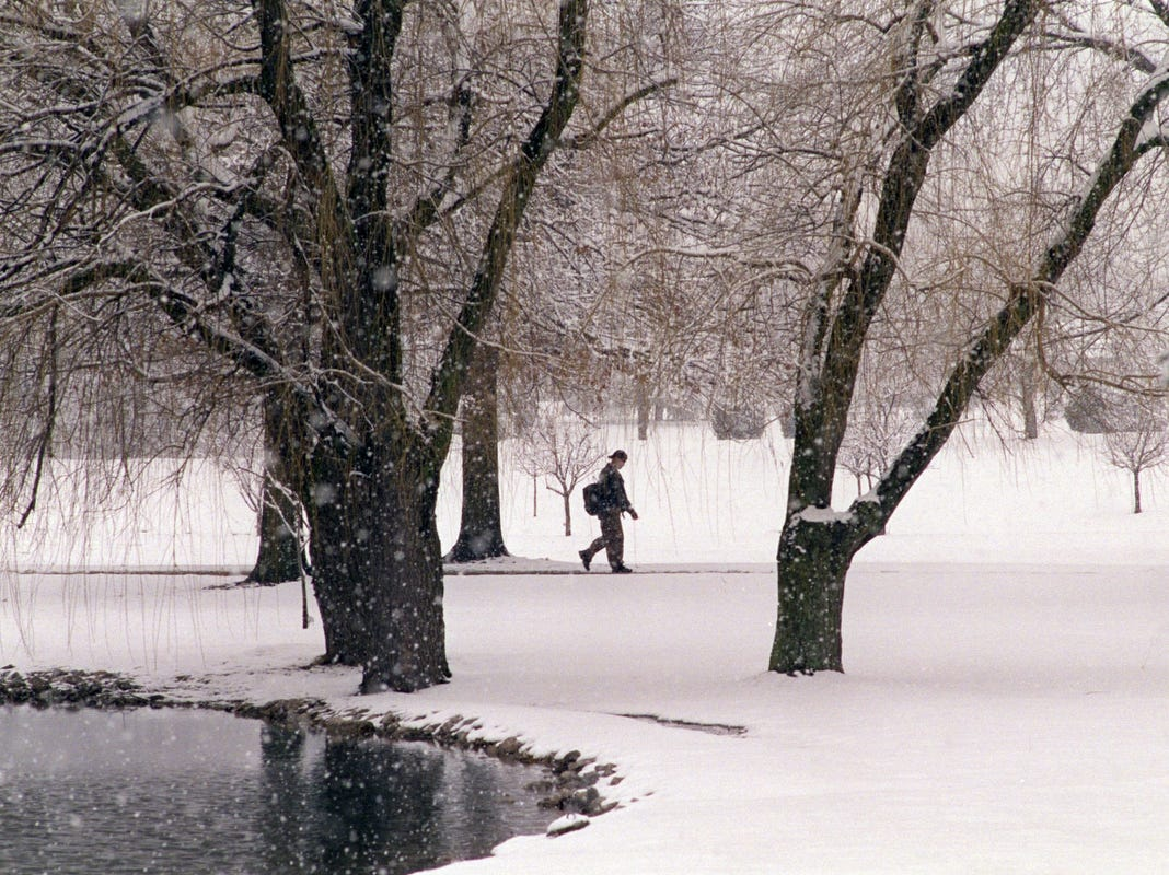 A erspm walks through falling snow on the grounds of Madonna University in Livonia in 2002.