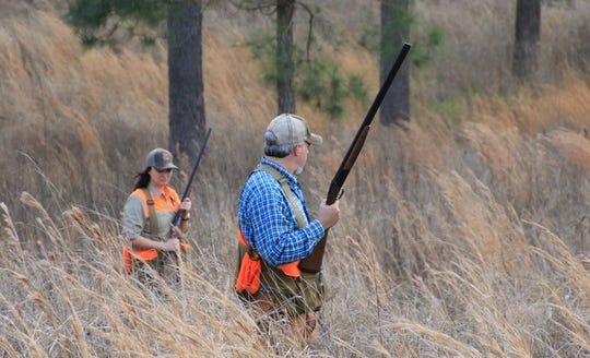 Quail hunting is just one of many outdoors activities that draw tourists to Alabama's Black Belt.