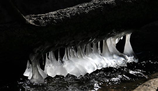 Upside down icicles cling from the bottom of a log suspended over the river. Water is splashing upwards against the log then flowing down and freezing.