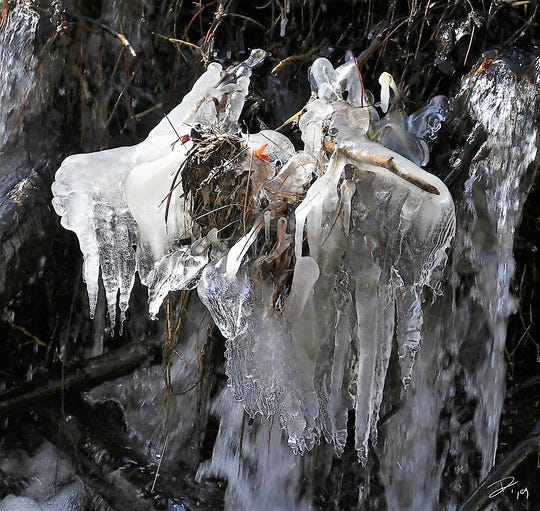 Frazil ice is a cluster of loose, randomly-oriented ice crystals shaped like tiny needles. It usually forms in rivers, lakes, oceans, and other water bodies containing turbulent open and supercooled water. When everything is just right falling water can freeze.