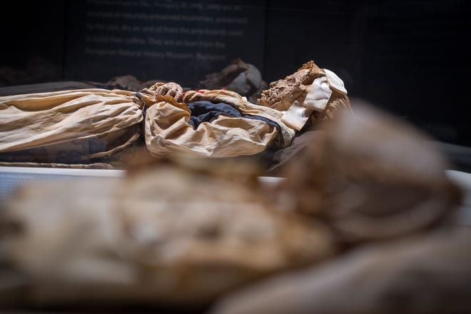 """Mummified remains of Veronica Orlovits are part of the """"Mummies of the World"""" exhibit. The exhibit will be featured at the Arizona Science Center from Feb. 10-Sept. 2, 2019."""