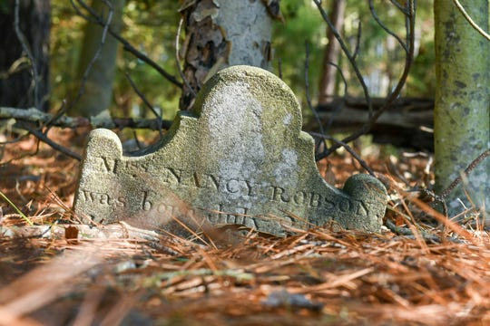 Historic grave stones that could be lost due to sea level rise peek above the ground at Robinson Neck Preserve on Friday, Jan. 25, 2019.