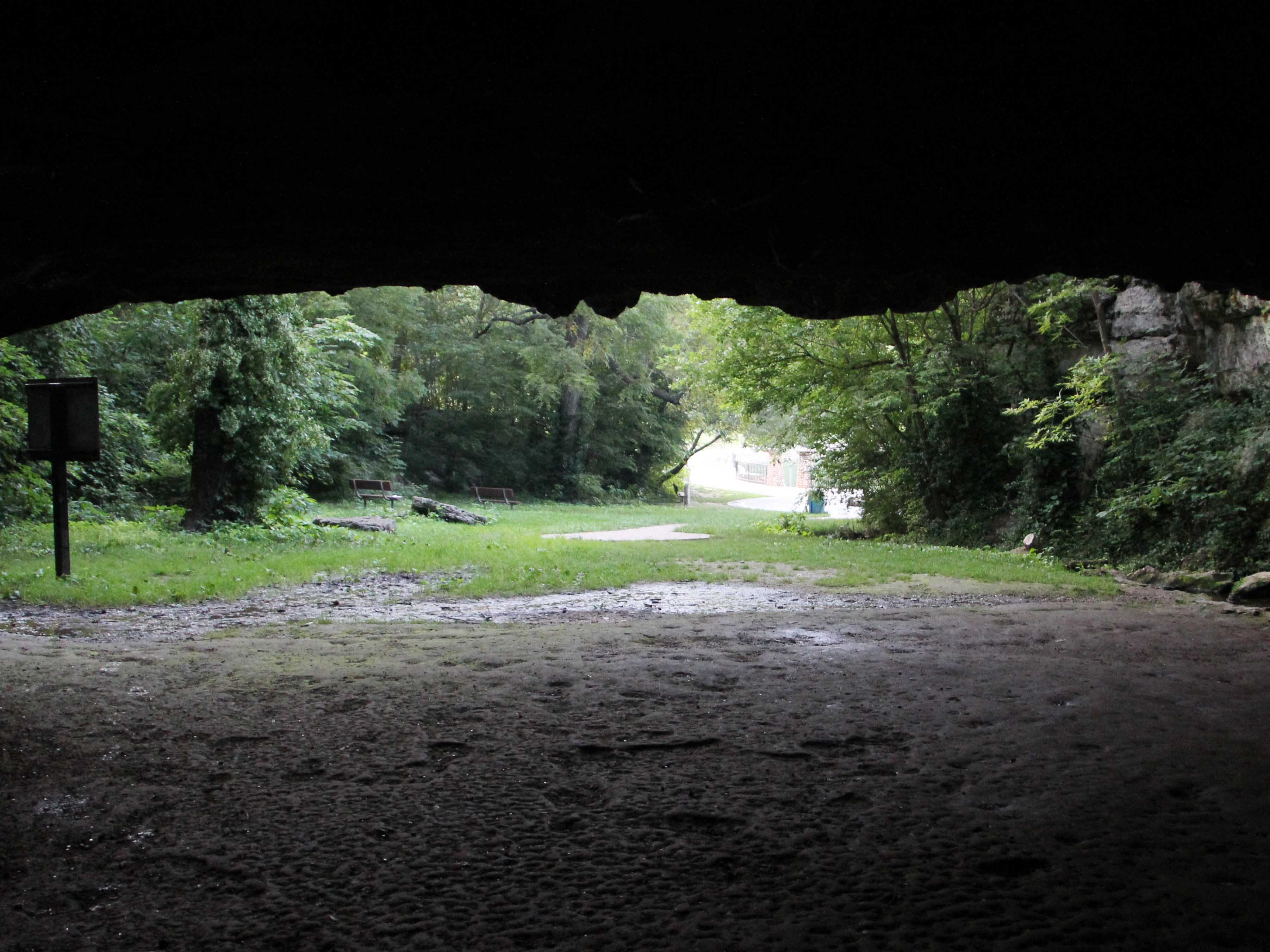 This view is from inside Giboney Cave, looking out toward the lake at Doling Park.
