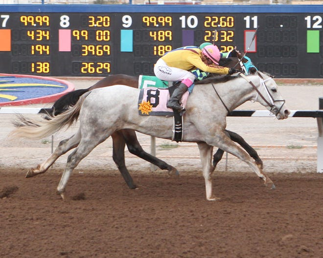 Nitrous won the one mile, Riley Allison Derby on Sunday at Sunland Park Raceterack & Casino.