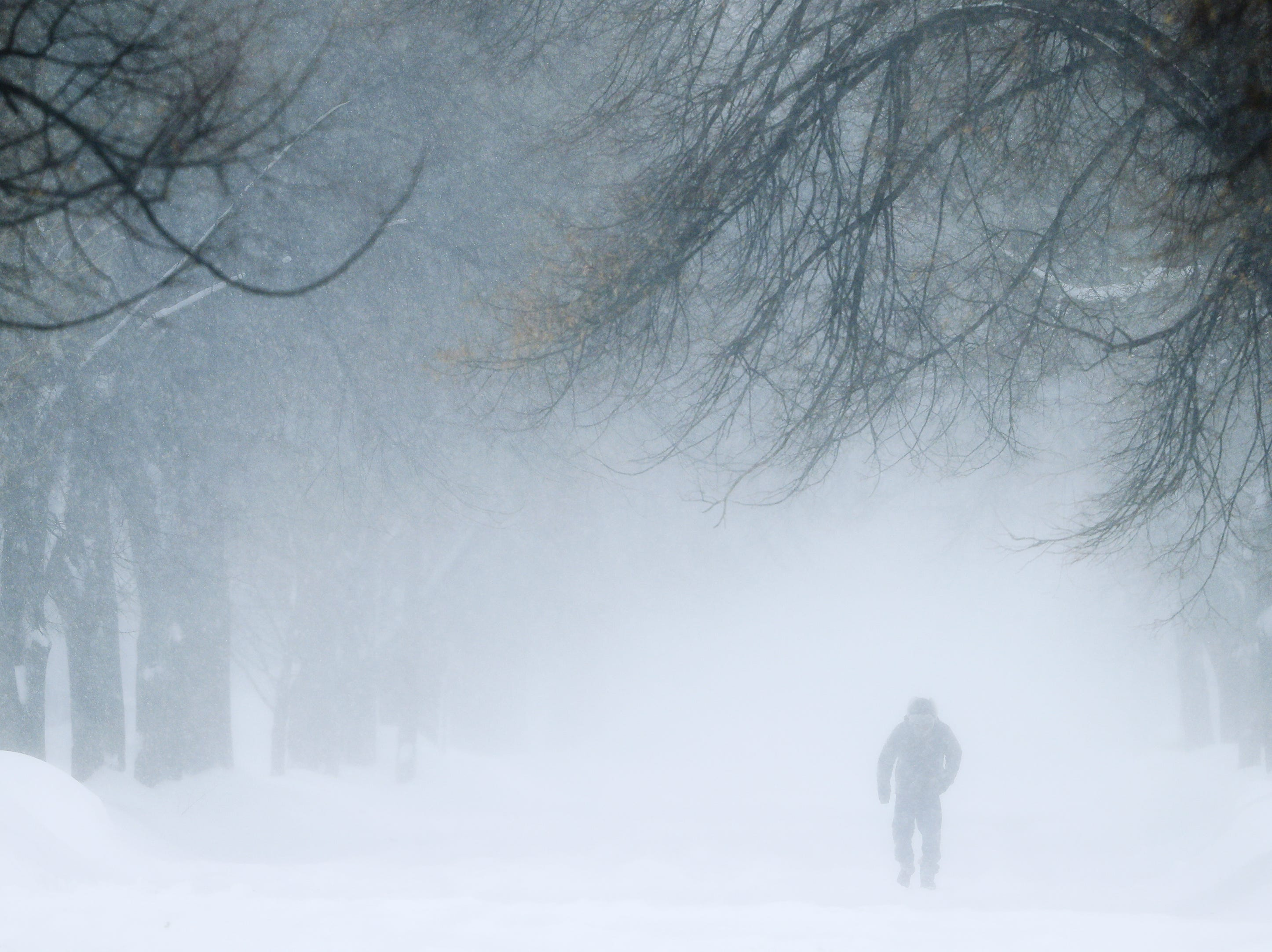 A man walks along a residential street during a snowstorm on Monday, Jan. 28, 2019 in Green Bay, Wis.