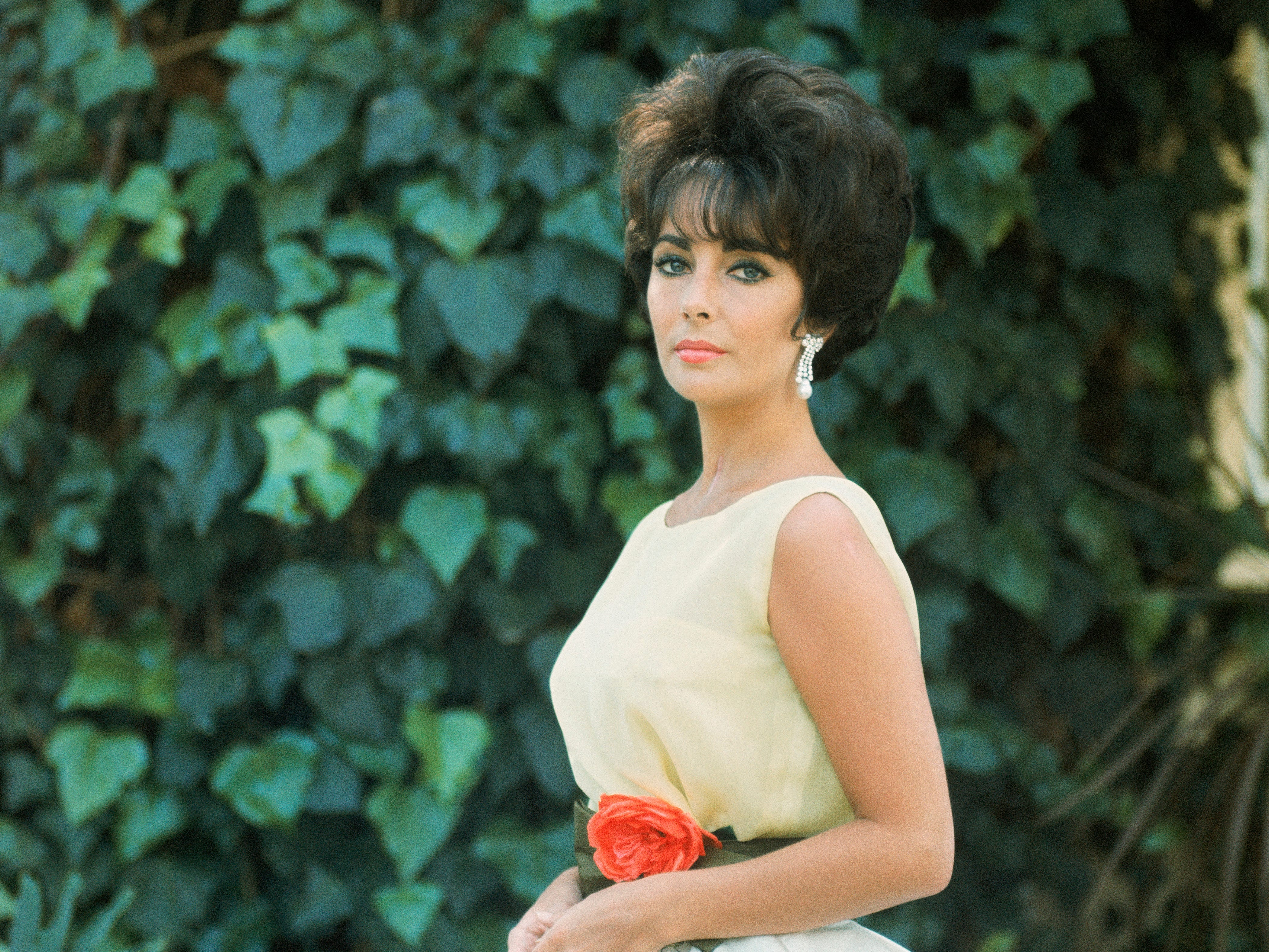 """Elizabeth Taylor wears a Dior dress, part of the """"Dior: From Paris to the World"""" exhibit at the Denver Art Museum."""