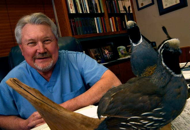 Dr. Norm Dozier in his Abilene office next to a pair of California Valley Quail mounts. Thirty years ago, Dozier launched a Texas-sized fundraiser for Disability Resources Inc., a quail hunt that over the years has brought in a number of celebrities and a lot of money.