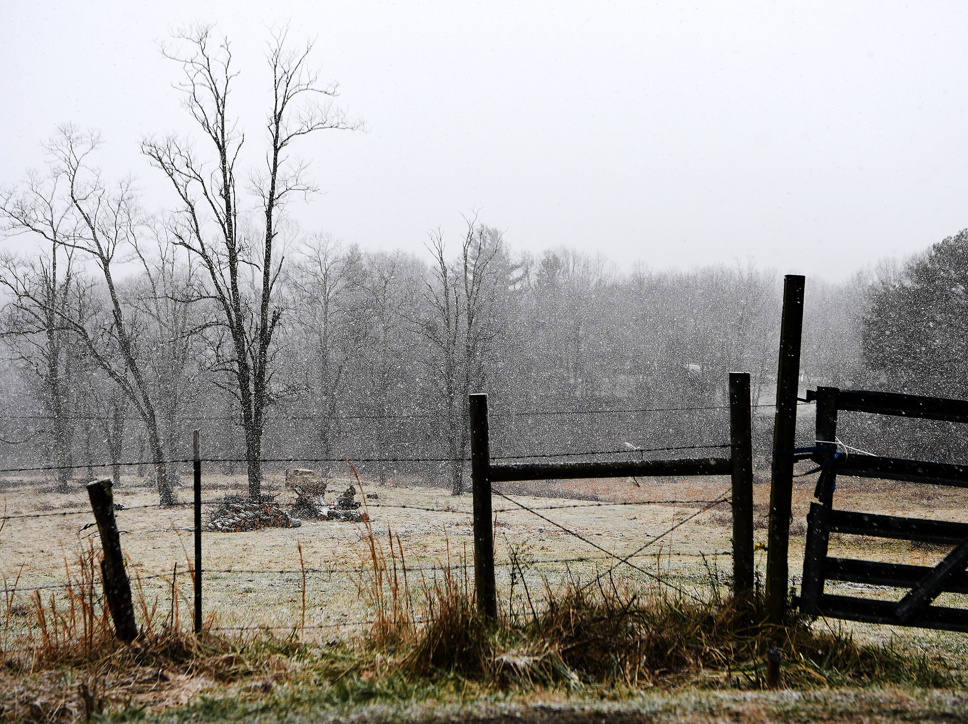 Snow falls on a field in East Asheville on Jan. 29, 2019. Up to three inches of snow with icy roads are forecasted.