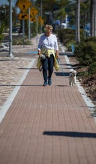 Part-time Cape Coral resident Kathy Stewart walks her dog Sam Tuesday afternoon along the new sidewalks on SE 47th Terrace. The year-long streetscape construction project is now complete. The downtown project spans from Coronado Parkway to SE 15th Avenue and incorporates revamped sidewalks, landscaping and a traffic circle.
