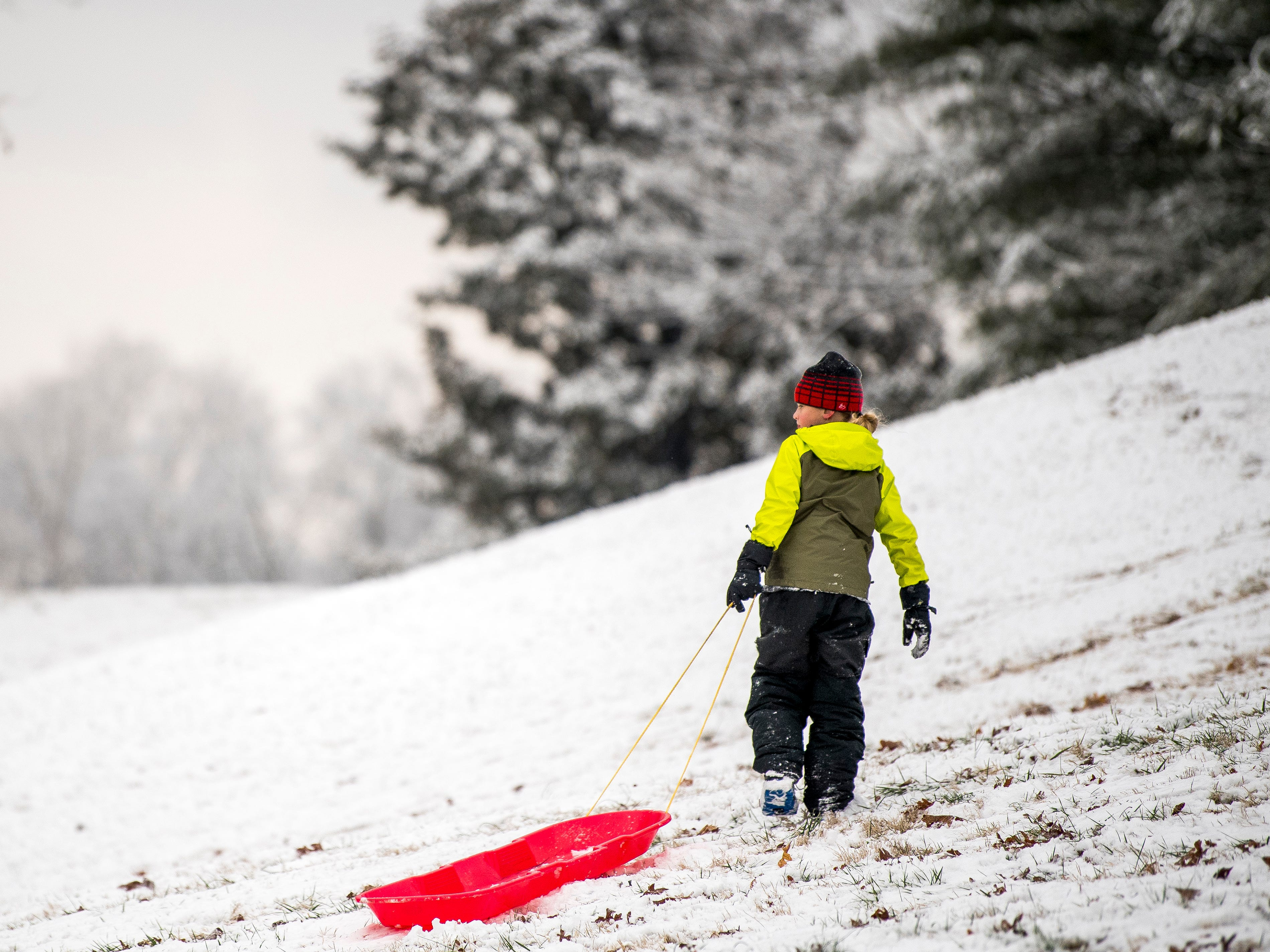 A boy watches as others sled down a steep hill at Lakeshore Park in Knoxville on Tuesday, January 29, 2019.