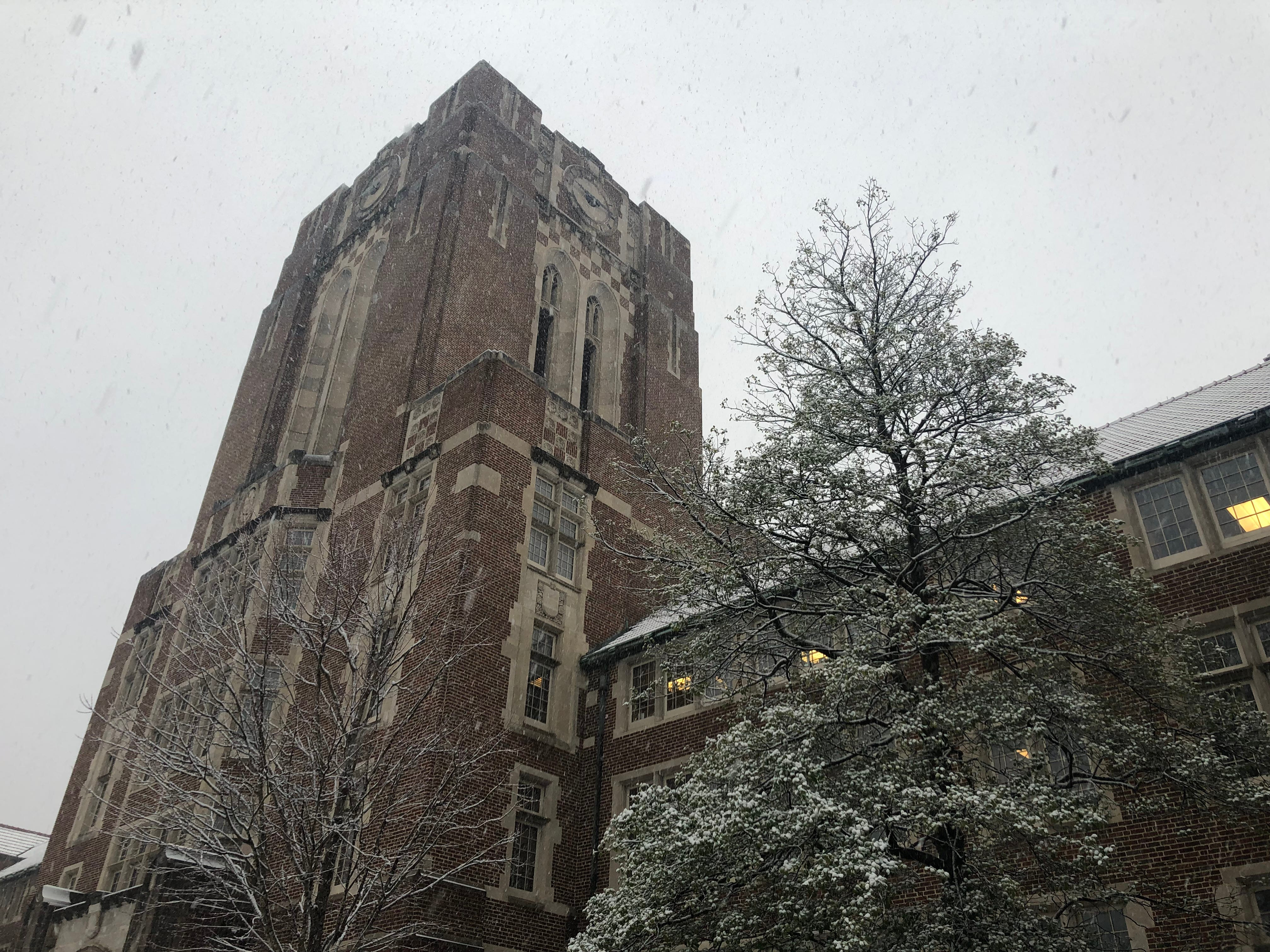 Snow falls at Ayres Hall at the University of Tennessee, Knoxville on Tuesday, Jan. 29, 2019.