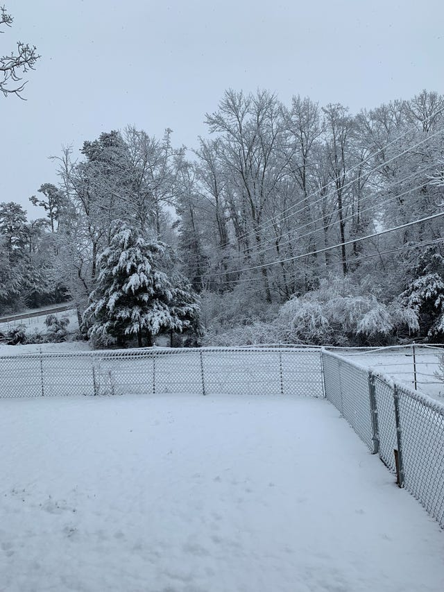 Snow in Knoxville: Forecast scaled back to less than one inch