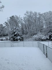 Thick snow covers Blount County after overnight snowfall on Tuesday, Jan. 29, 2019.