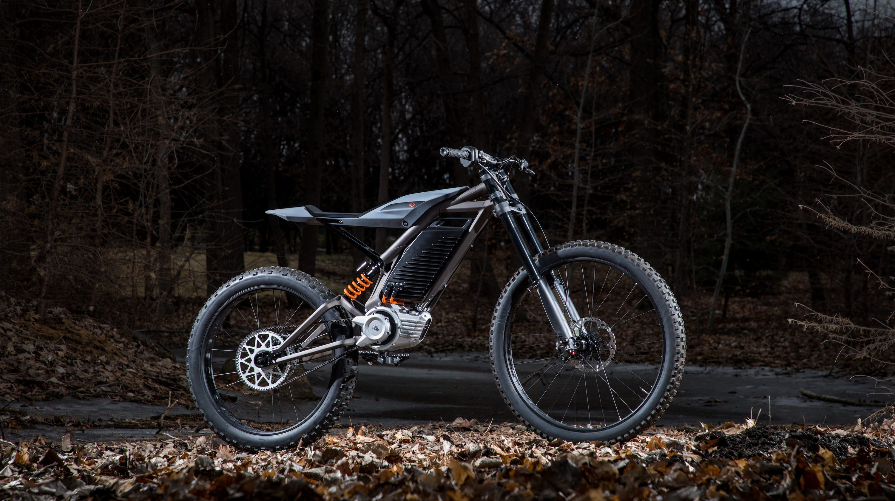 Harley-Davidson U.S. bike sales tumble  company says it s developing more  electric motorcycles ca3389edf15e