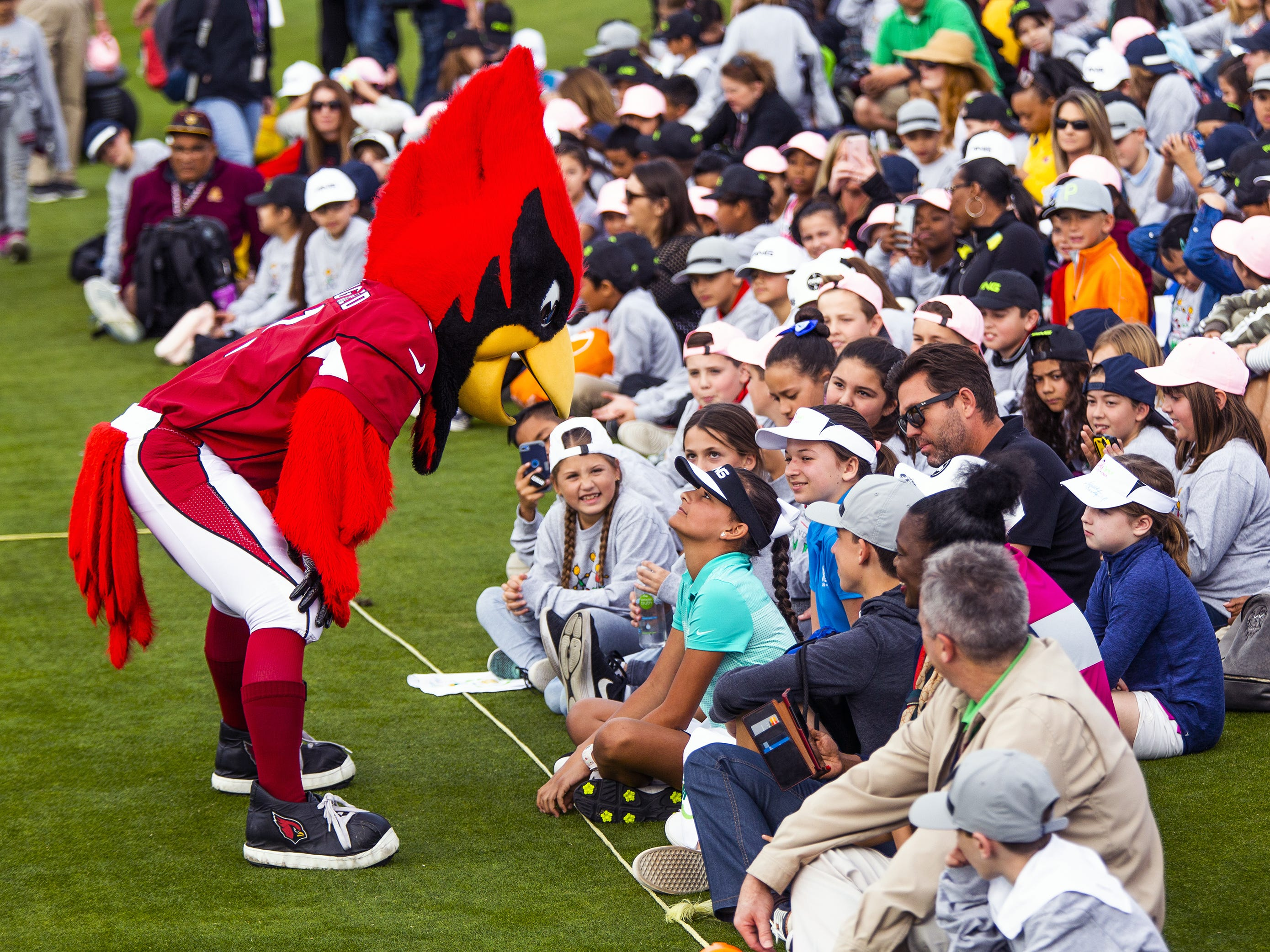 Big Red, the team mascot for the Arizona Cardinals NFL team, interacts with the crowd at the R.S. Hoyt Jr. Family Foundation Dream Day Junior Golf Clinic presented by PING at the Waste Management Phoenix Open at the TPC Scottsdale, Tuesday, January 29, 2019.