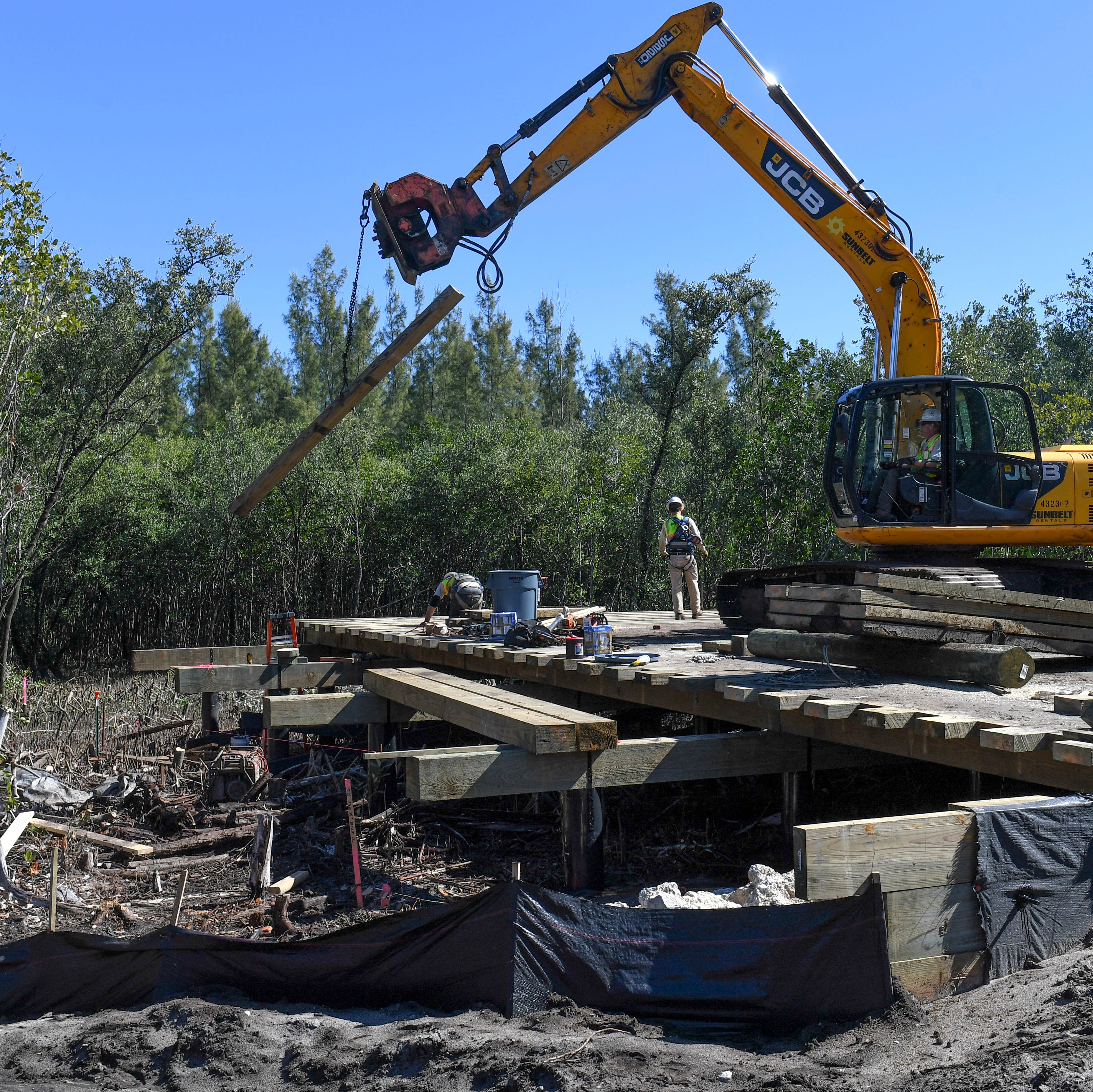Mangrove-cutting developer on Hutchinson Island expected to pay $32,000 in mitigation
