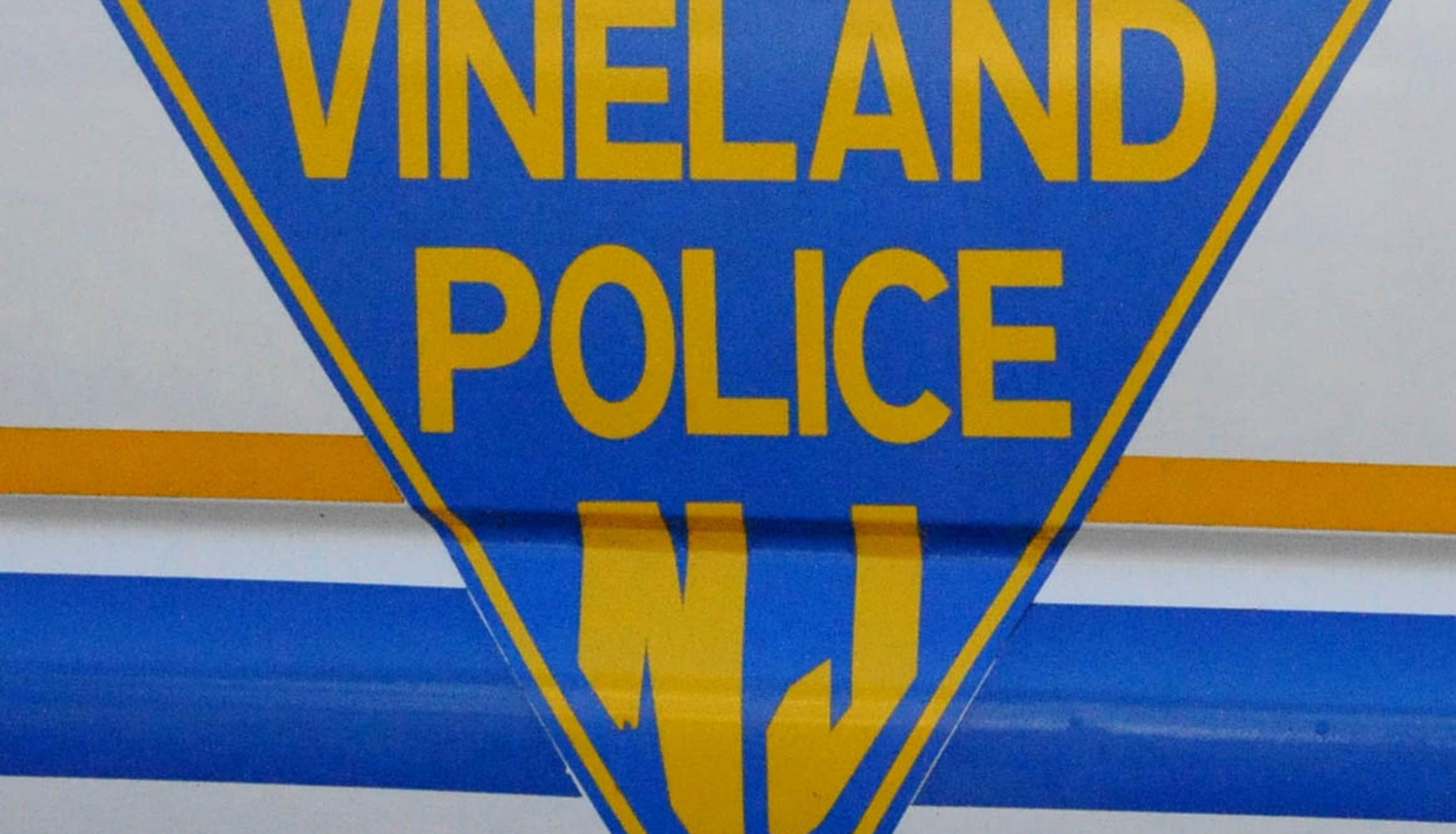 Vineland police blamed in lawsuit for mistaking rock salt