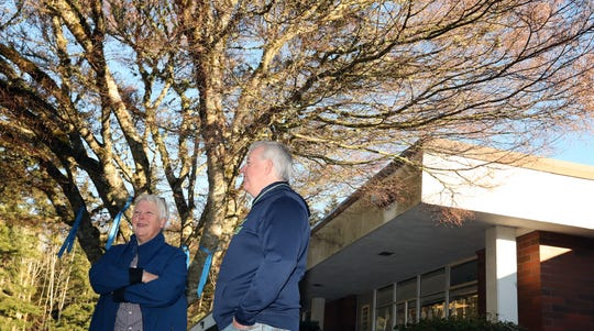 Emily Gustafson and Dave Hannon chat underneath the Japanese maple tree in front of Bainbridge Island's Captain Johnston Blakely Elementary School on Tuesday, January 29, 2019. Both Gustafson and Hannon were students at the school and helped plant the tree in 1967