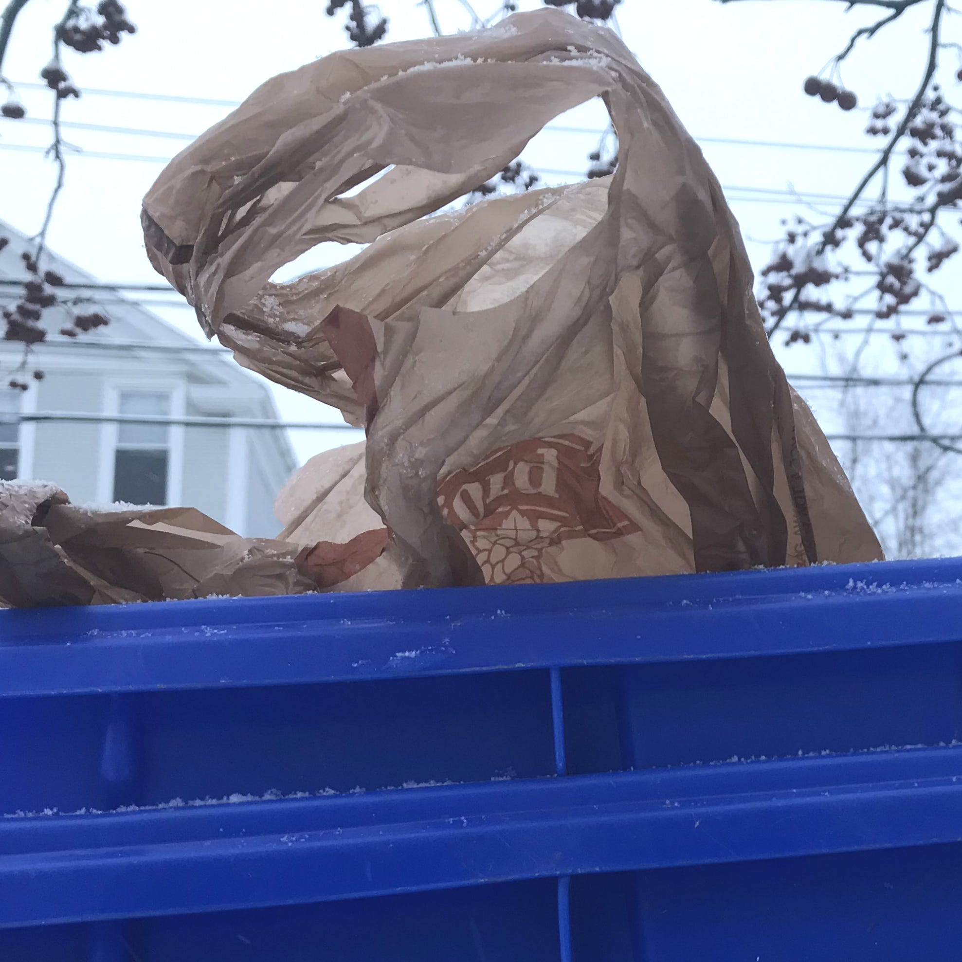 How Vermont's plastic bag, foam packaging ban would change the way you shop