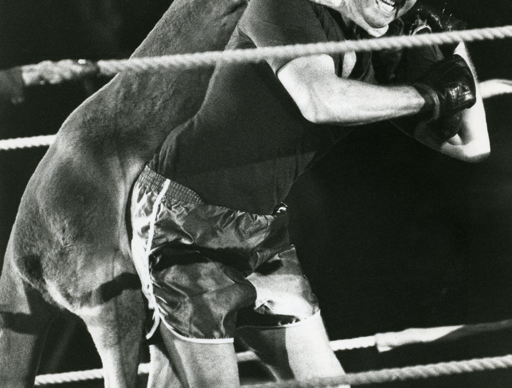 It was a boxing event for the Shrine Circus at the Memorial Coliseum on October 7, 1983, but this audience volunteer quickly discovered that the boxing kangaroo was more of a wrestler.