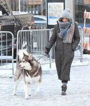 Hillary Vigilant  and Goose, an Alaskan Malamute, go for a walk in frigid Detroit Wednesday morning.