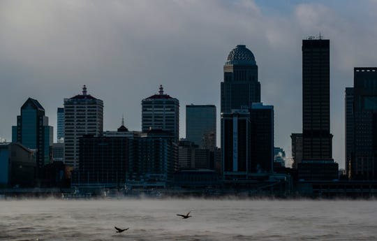 Two birds fly above the steam that rises above the Ohio River as the Louisville skyline looms in the background. The wind chill made it feel like -17.