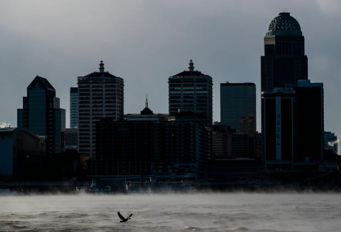 A goose flies above the steam that rises above the Ohio River as the Louisville skyline looms in the background.  January 2019