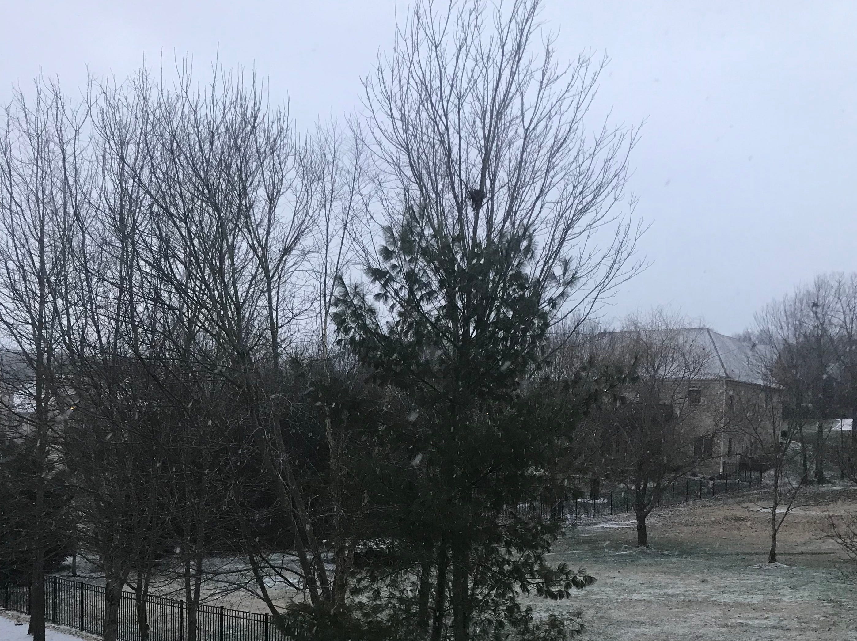 A dusting of snow falls in Nolensville