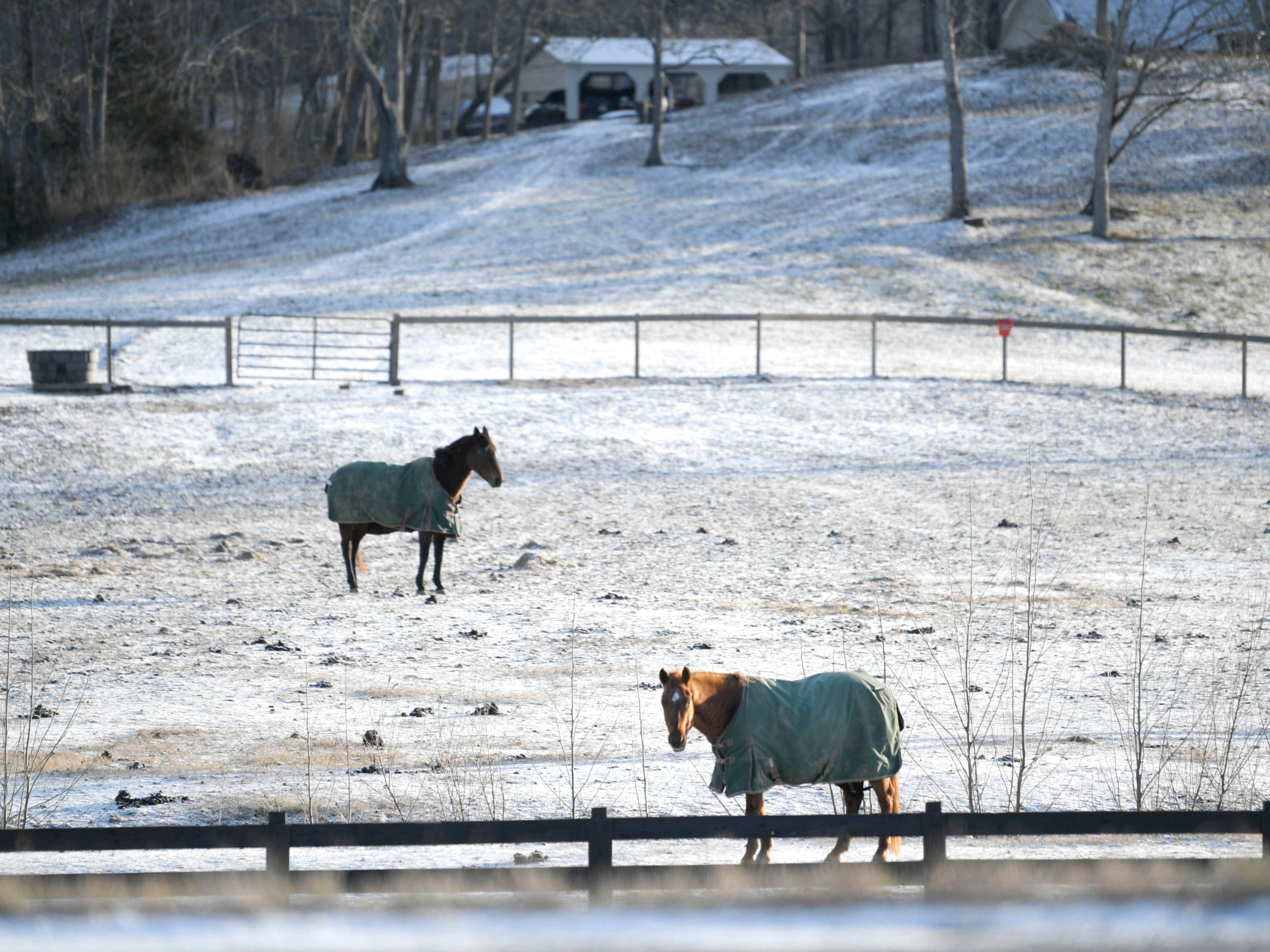 Horses wearing blankets stand in a field in Franklin after a dusting of snow hit Middle Tennessee Wednesday, Jan. 30, 2018.