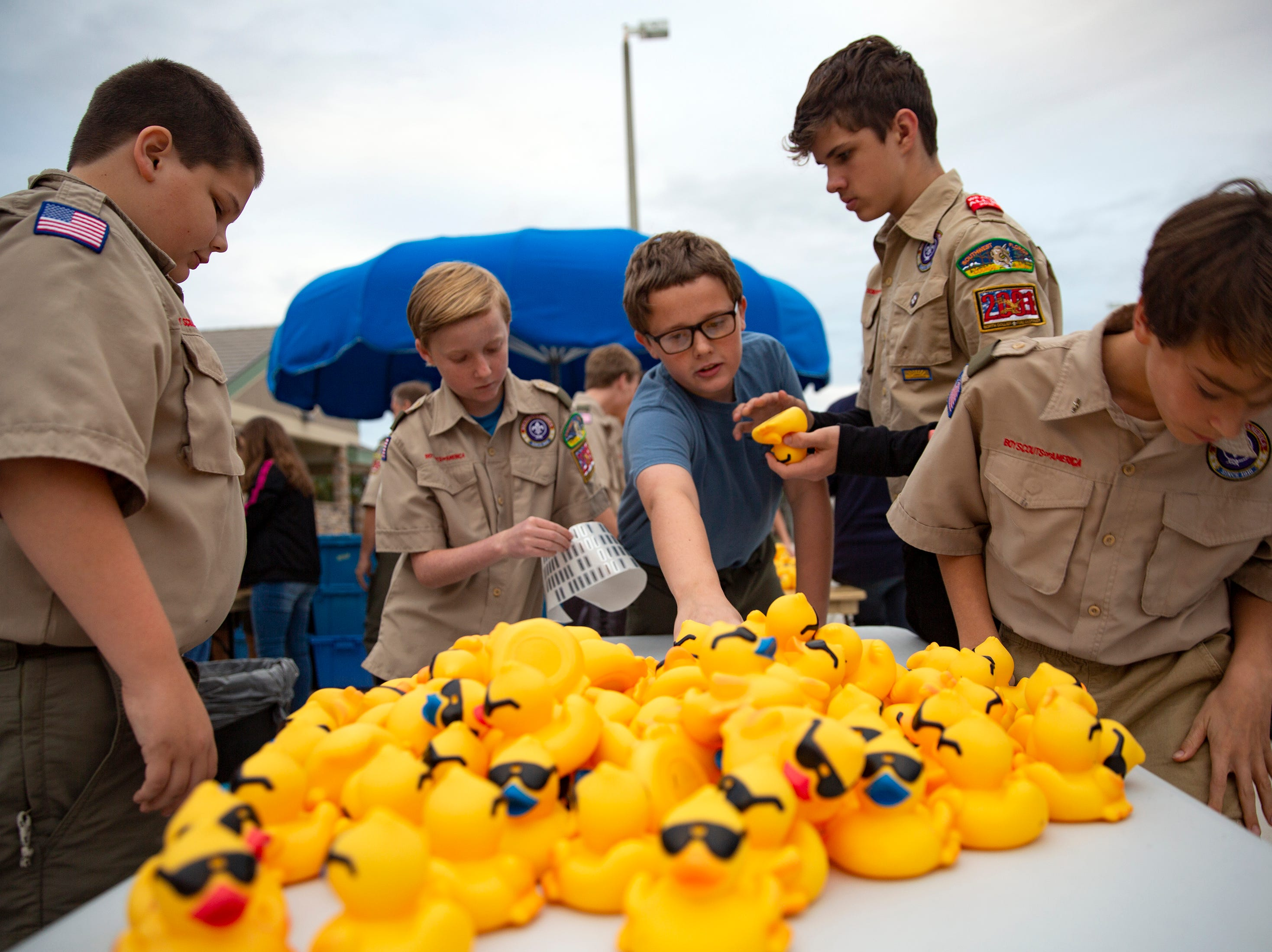 Members of Boy Scouts Troop 2001 help place tags on rubber ducks, Wednesday, Jan. 30, 2019, at the North Collier Regional Park in East Naples.