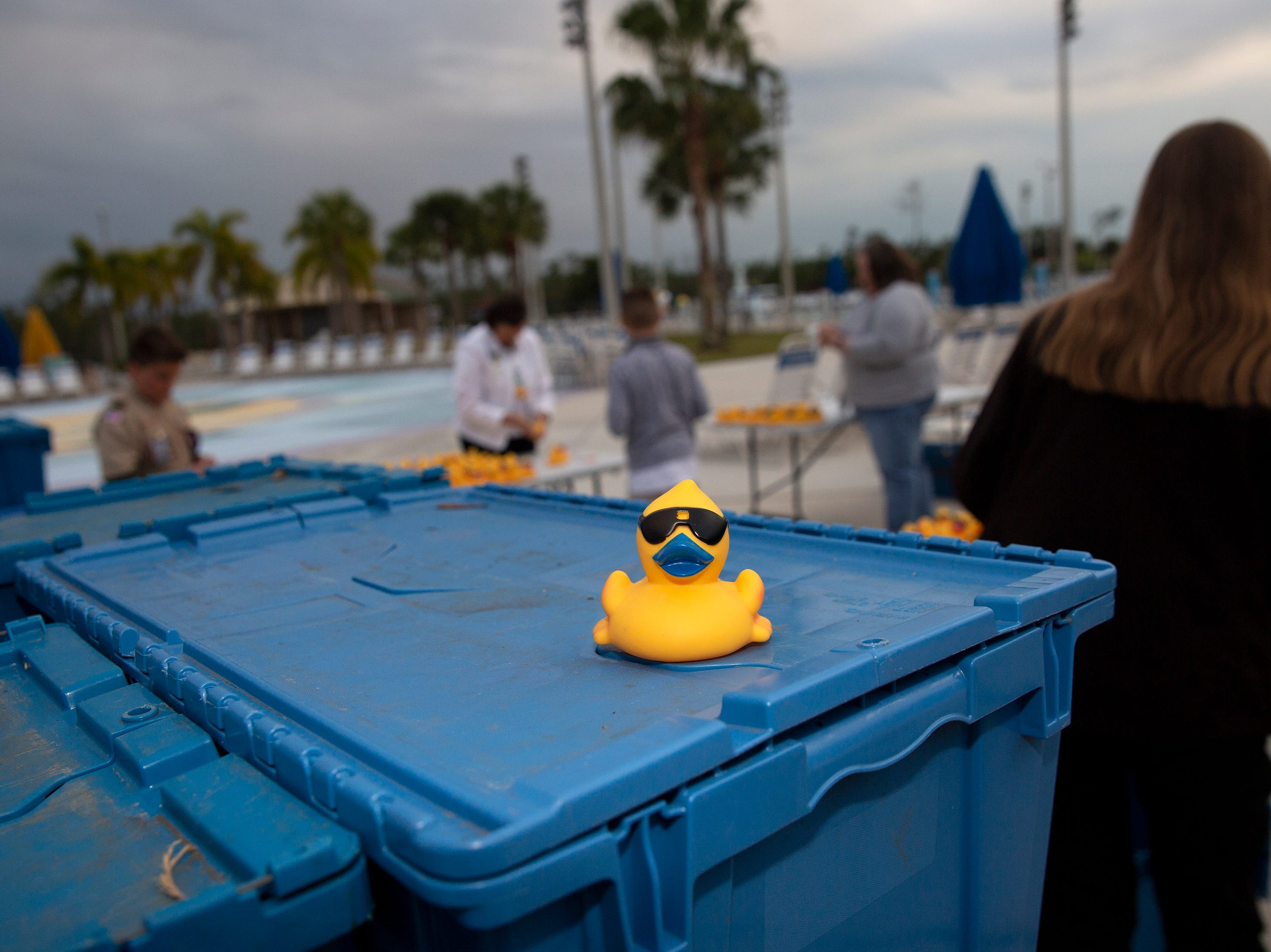 Volunteers place tags on rubber ducks, Wednesday, Jan. 30, 2019, at the North Collier Regional Park in East Naples.