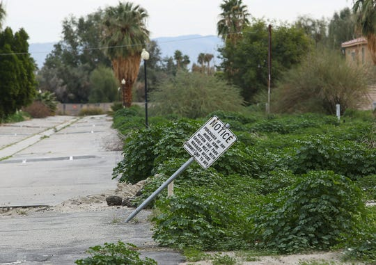 Overgrown weeds cover the former mobile home community called Rancho Palms in Rancho Mirage, January 30, 2019.