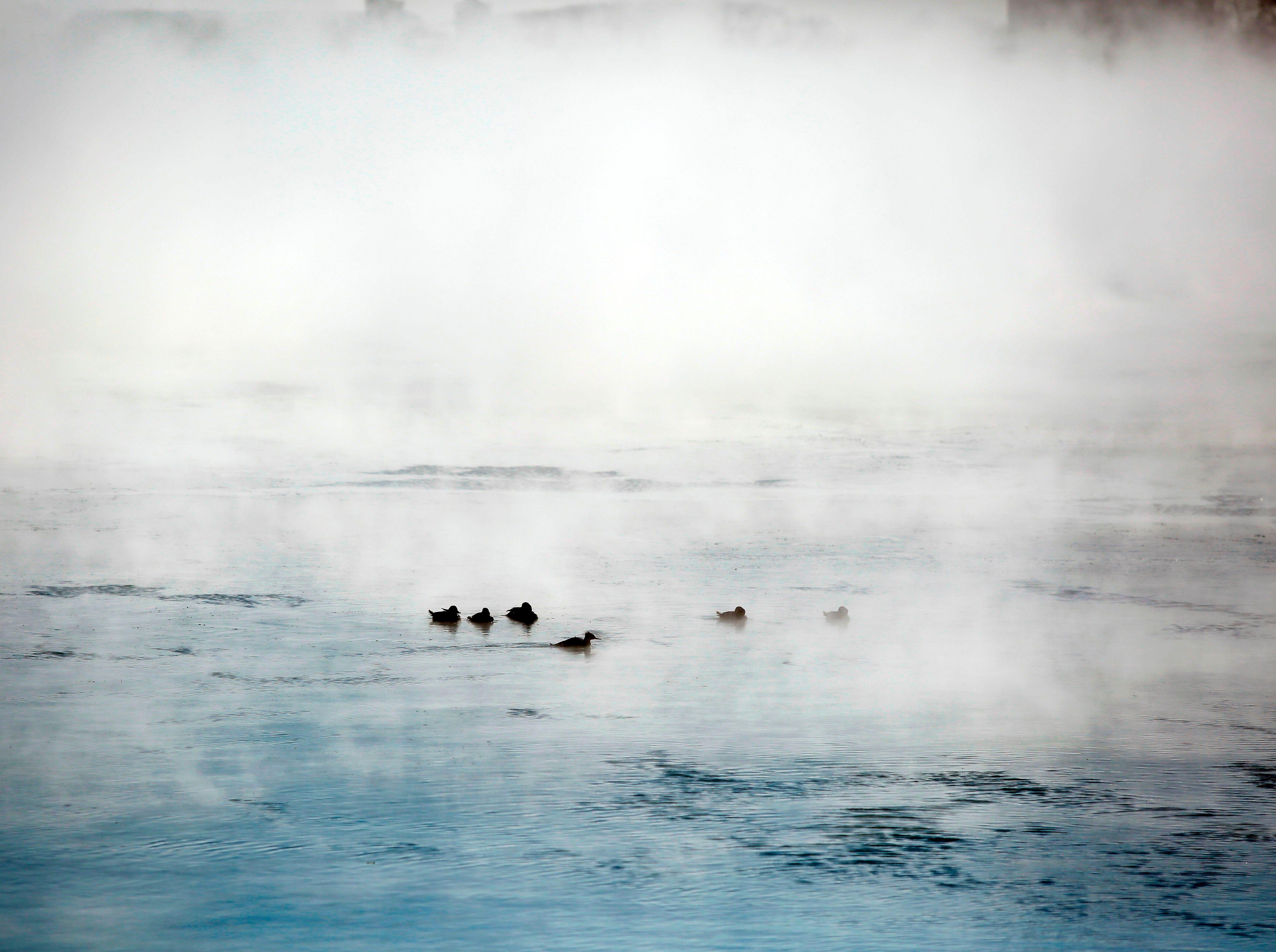 os patos descansan en el lago Michigan cuando las temperaturas bajaron a -20 grados F (-29 ° C) el 30 de enero de 2019 en Chicago, Illinois.