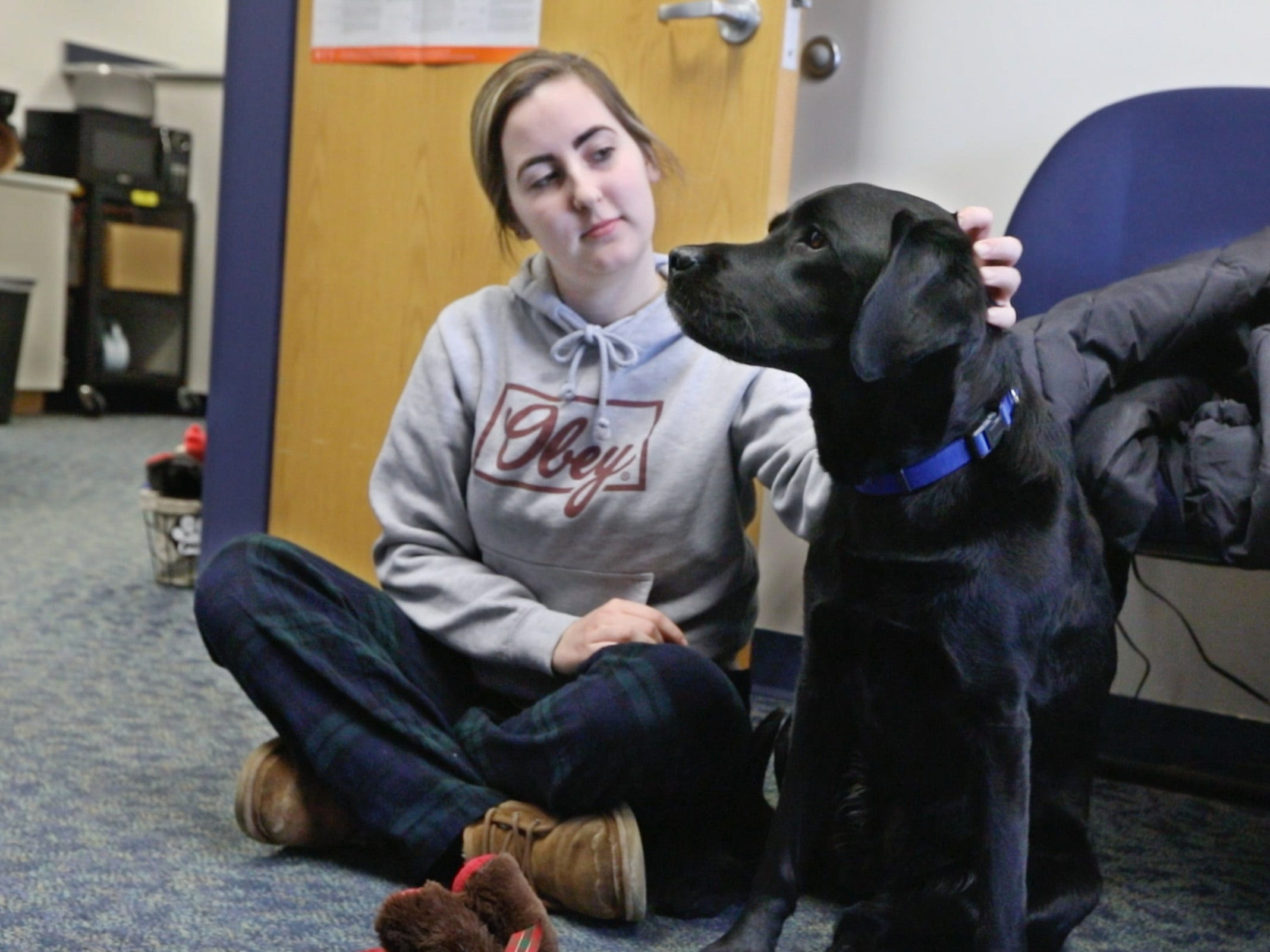 Breanna Tamburello, 17, a senior, visits with Ruby, a 4-year-old black Lab who is the new therapy dog at Spencerport High School, on Tuesday, Jan. 29, 2019.