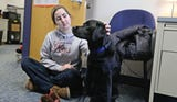 Meet Ruby, the new therapy dog at Spencerport High