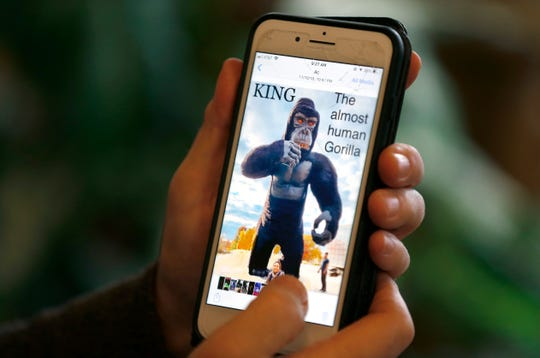 George Carden shows a photo of King, the almost human gorilla, a new act appearing in the 2019 George and Brett Carden International Circus this weekend at JQH arena.